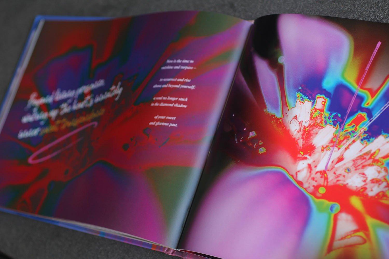 Page design - Sunshine Coast book designer - Predator effect - gradient maps in Photoshop